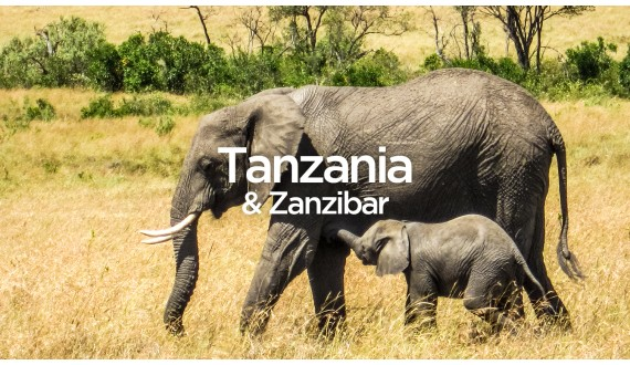 Exit To Tanzania