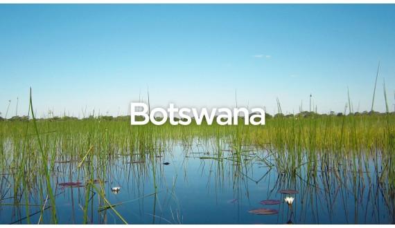 Exit To Botswana